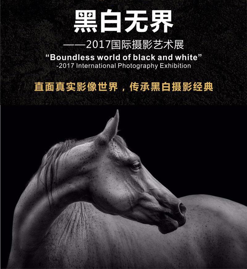 Image result for 黑白无界