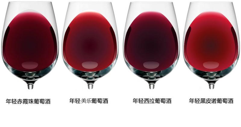 品酒入门:介绍18种红,白葡萄酒